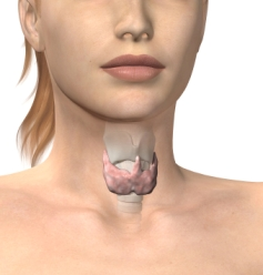 Low Thyroid and Depression