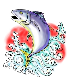 Buyer be Aware – something stinks in the fish business