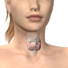 low-thyroid-depression-tmb.jpg